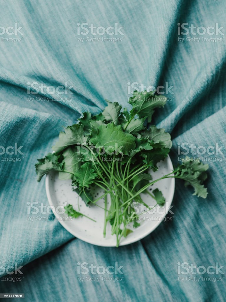 Healthy food still life fresh cut baby leaf green kale stock photo