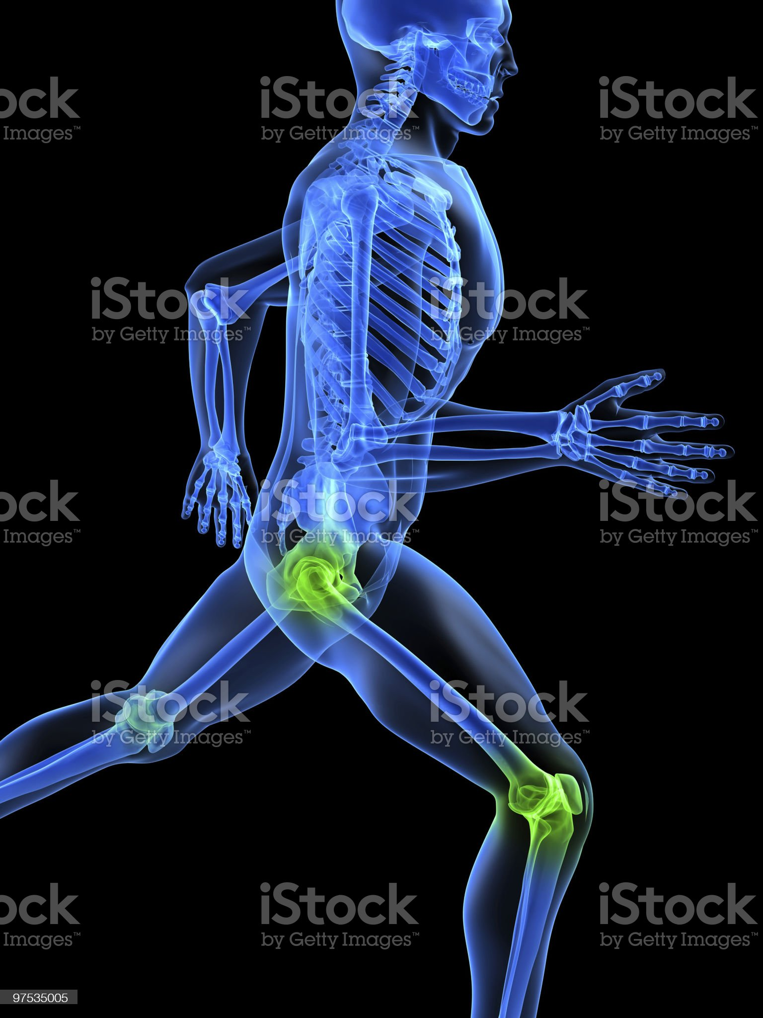 healthy joints royalty-free stock vector art