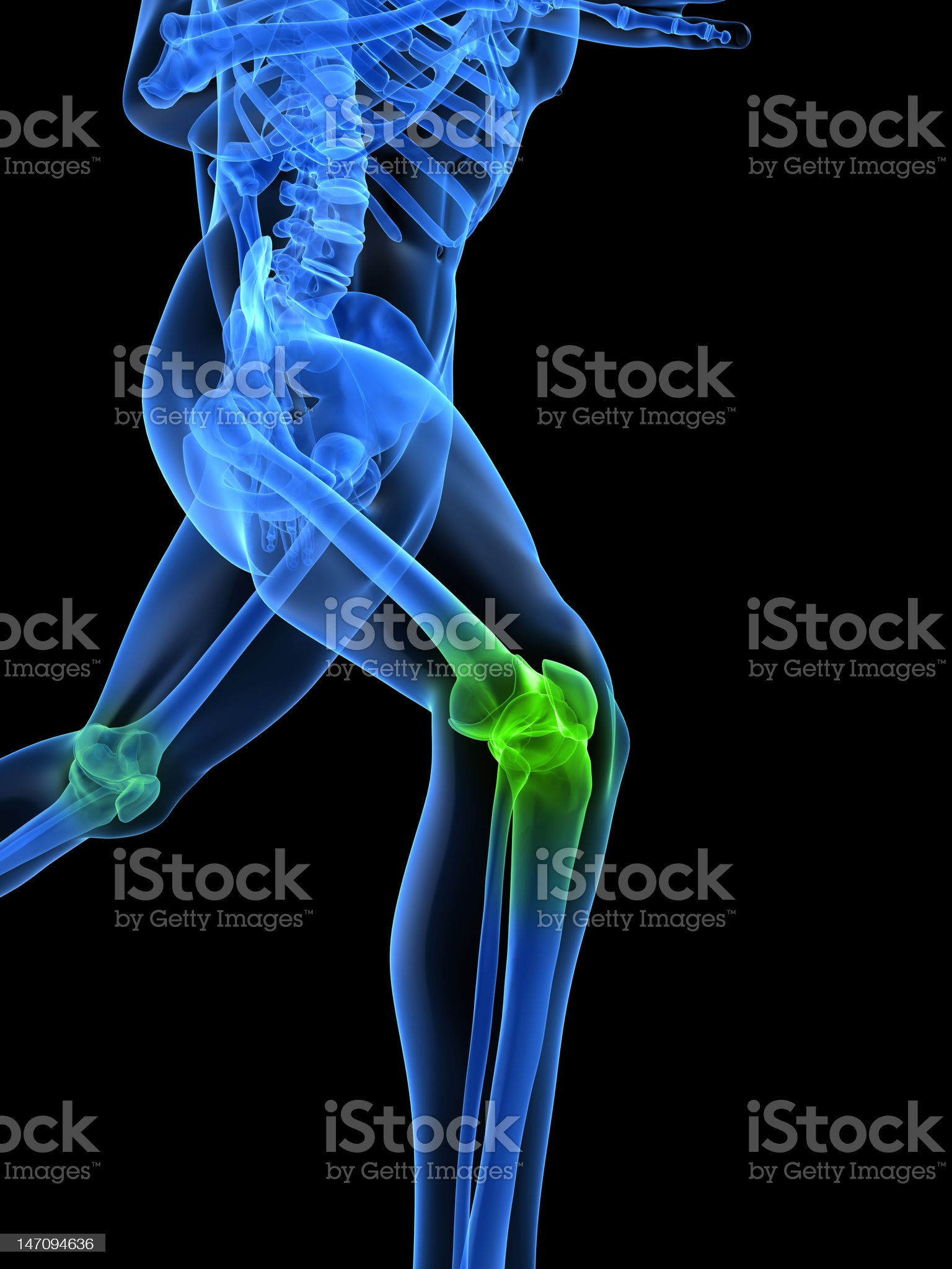 healthy knee royalty-free stock photo