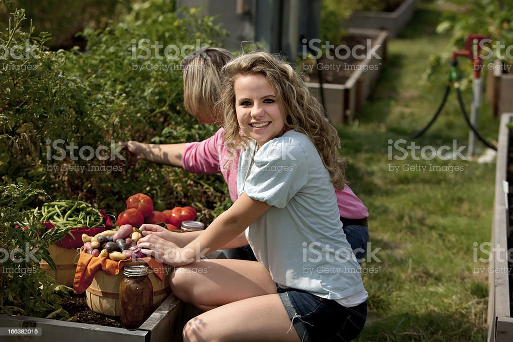 Healthy Lifestyle: Caucasian Mother Daughter Picking Homegrown Vegetables to Can royalty-free stock photo