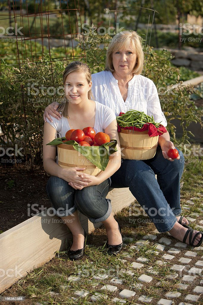 Healthy Lifestyle: Mother and Daughter Picking Homegrown Tomatoes in Garden royalty-free stock photo