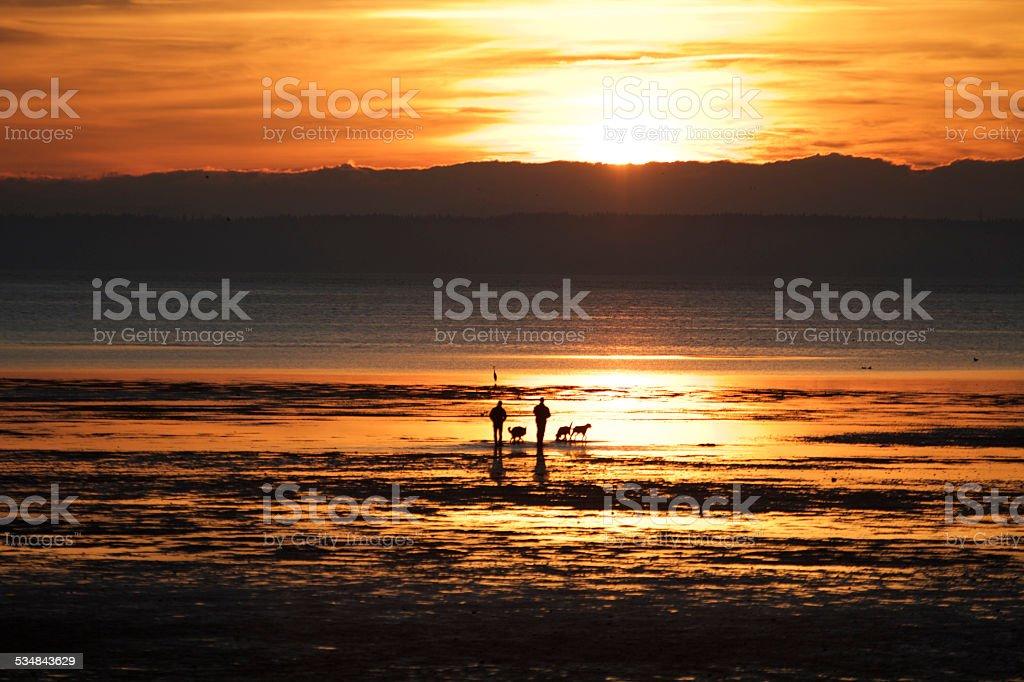 Healthy Lifestyle on the beach stock photo