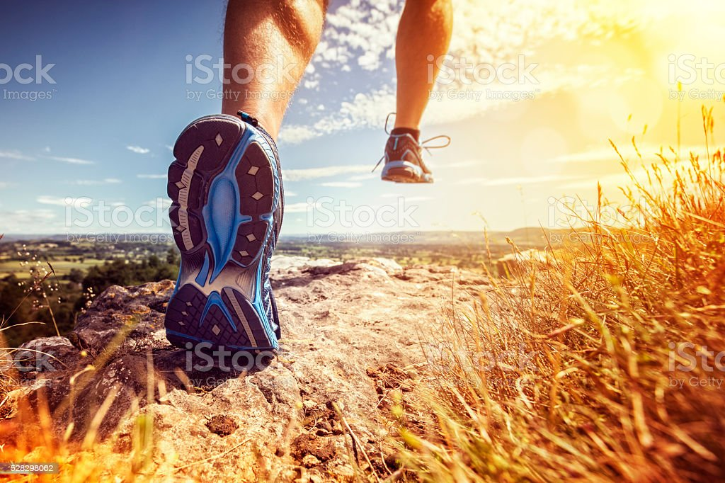 Healthy trail running royalty-free stock photo
