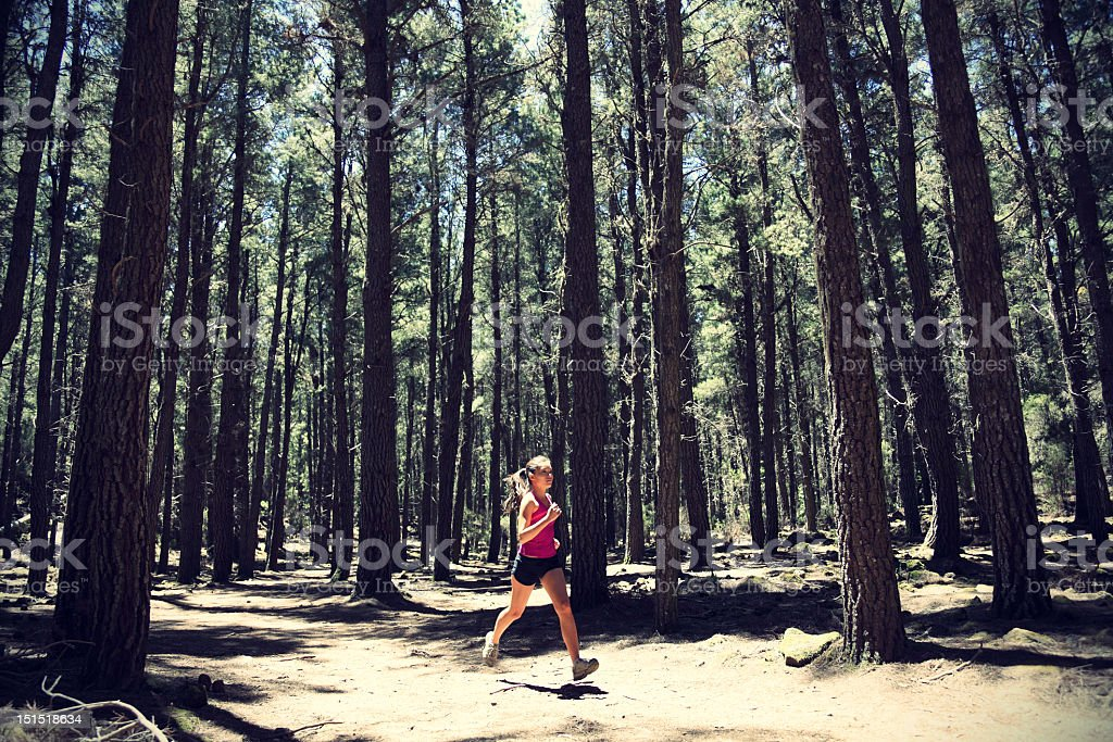 A healthy woman on a run in a forest royalty-free stock photo