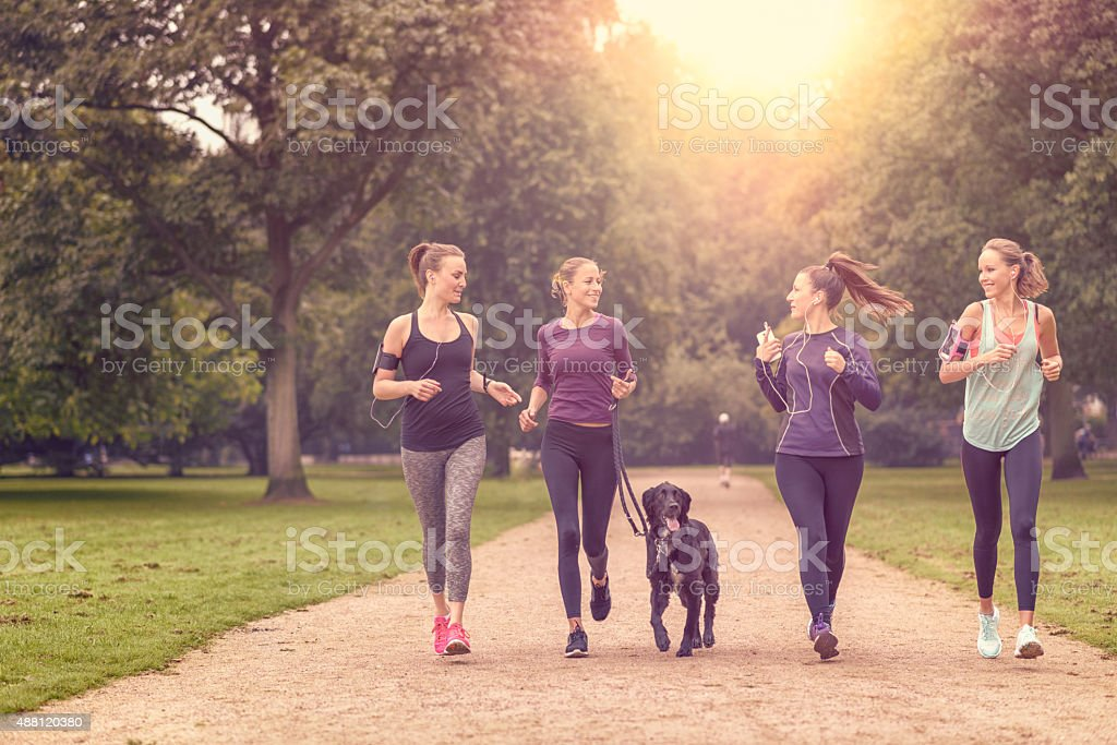 Healthy Women Jogging at the Park with a Dog stock photo
