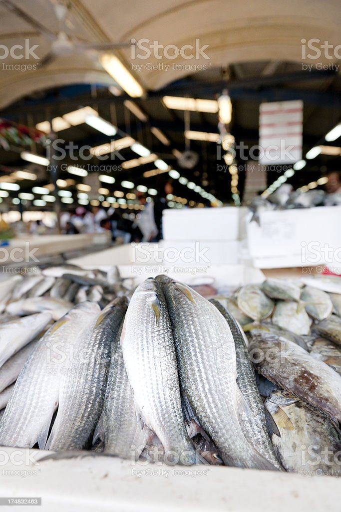 heap of fish at Deira market in Dubai stock photo