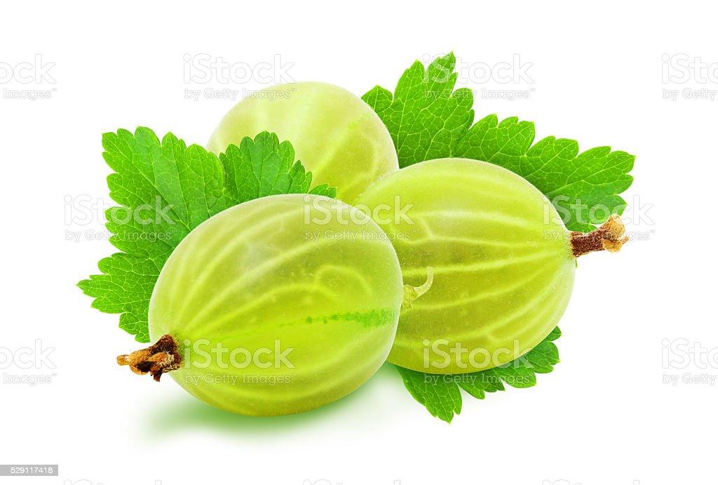 Heap of fresh gooseberries. stock photo