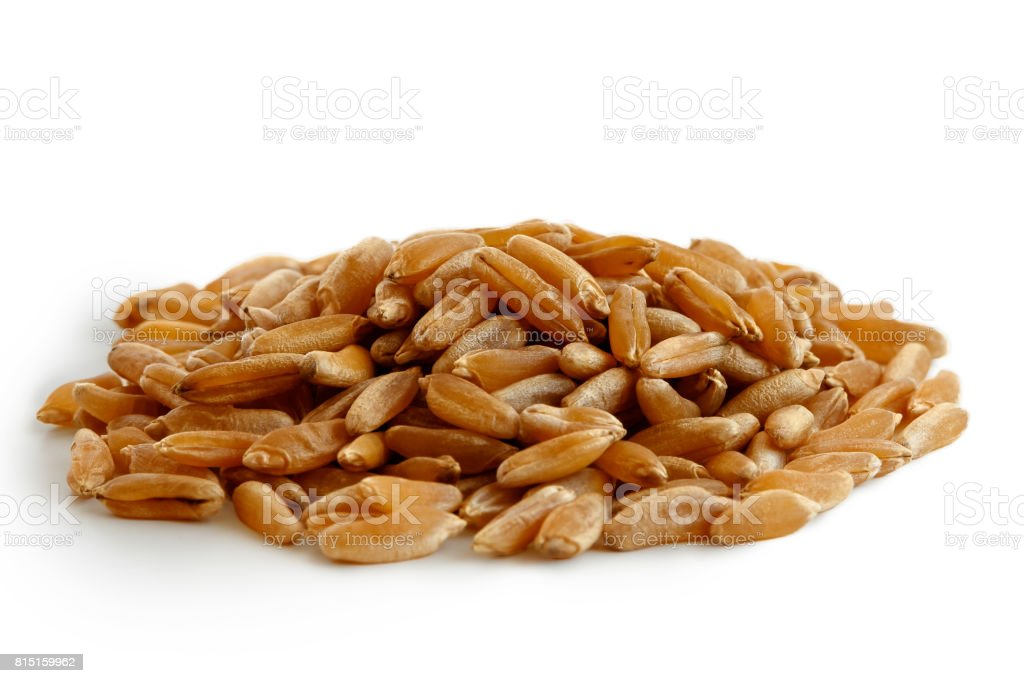 Heap of kamut wheat kernels stock photo