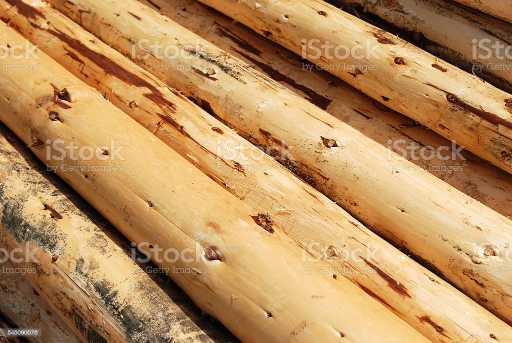 Heap of Logs stock photo