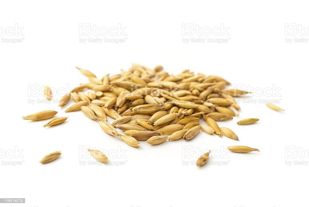 heap of oat grains stock photo