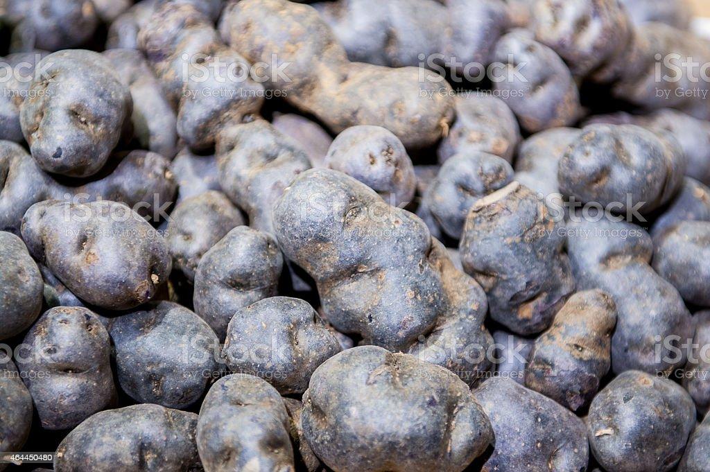 Heap of purple potatoes close up stock photo