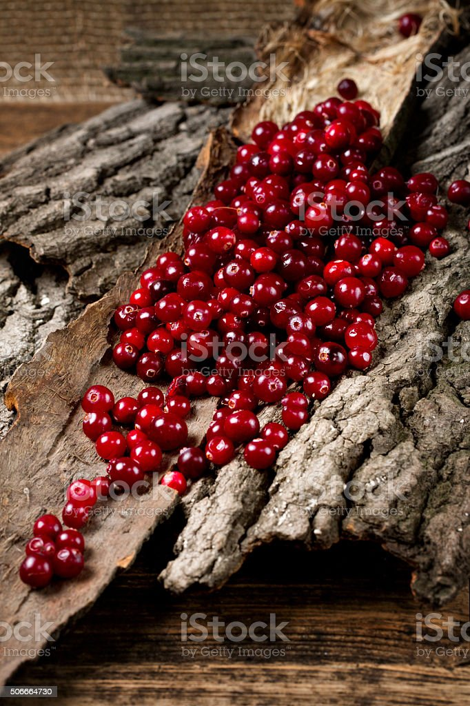 Heap of ripe cranberries on a piece of bark stock photo