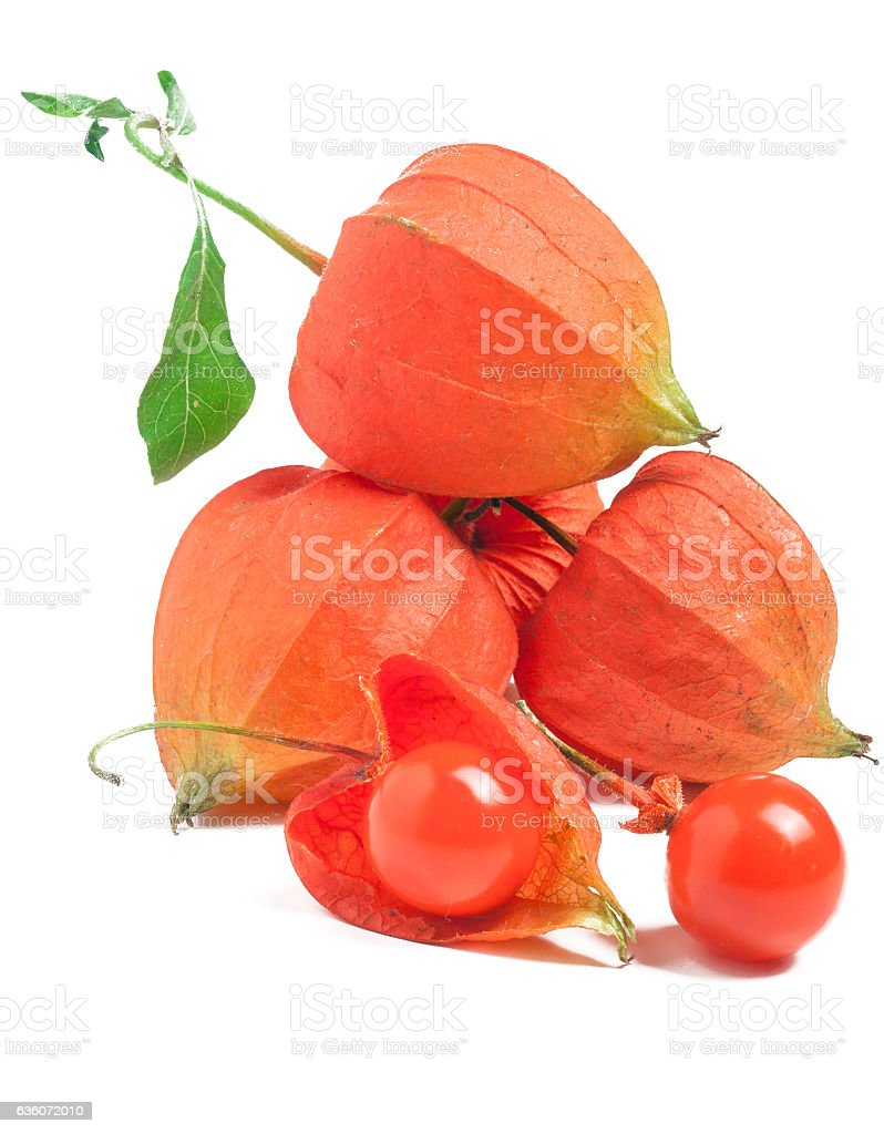 heap or bunch of Physalis isolated on a white background stock photo