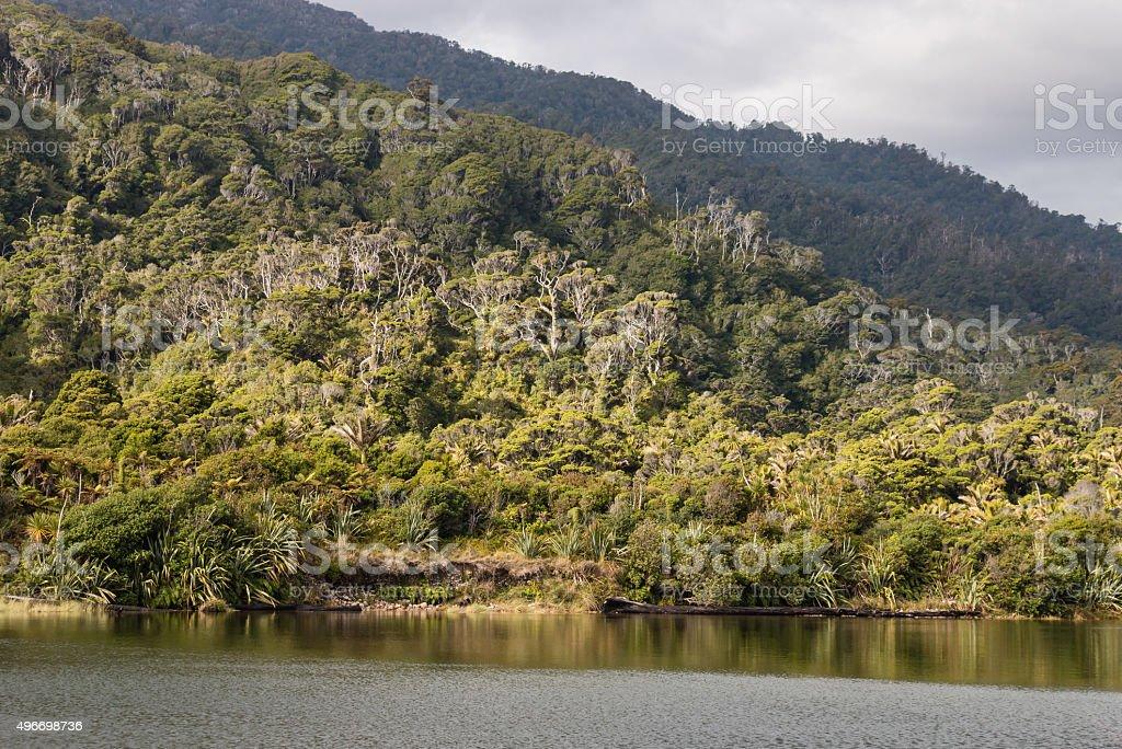 Heaphy river at Kahurangi National Park stock photo
