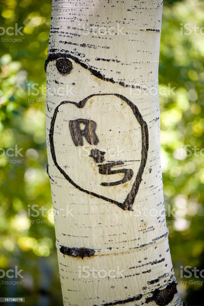 Heart and Initials Carved in Tree stock photo