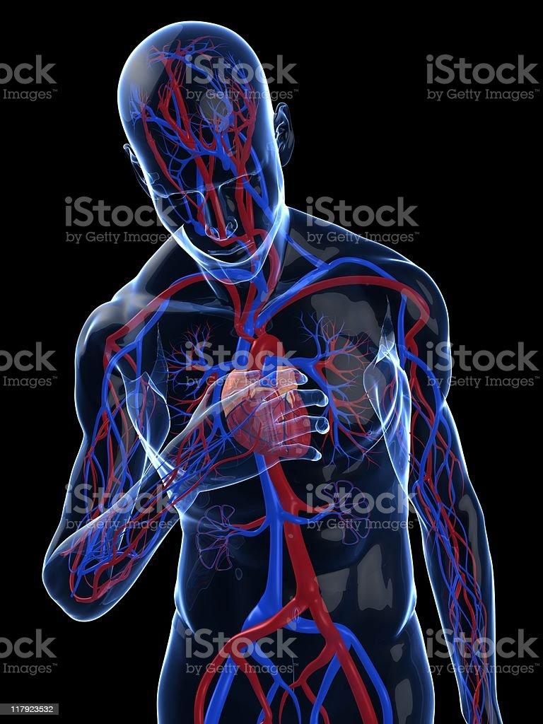 heart attack royalty-free stock photo