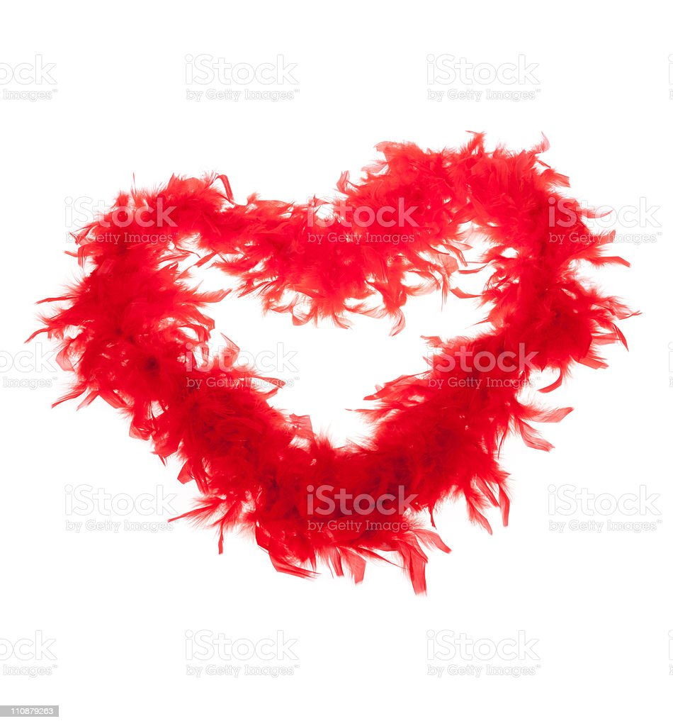 Heart - boa stock photo