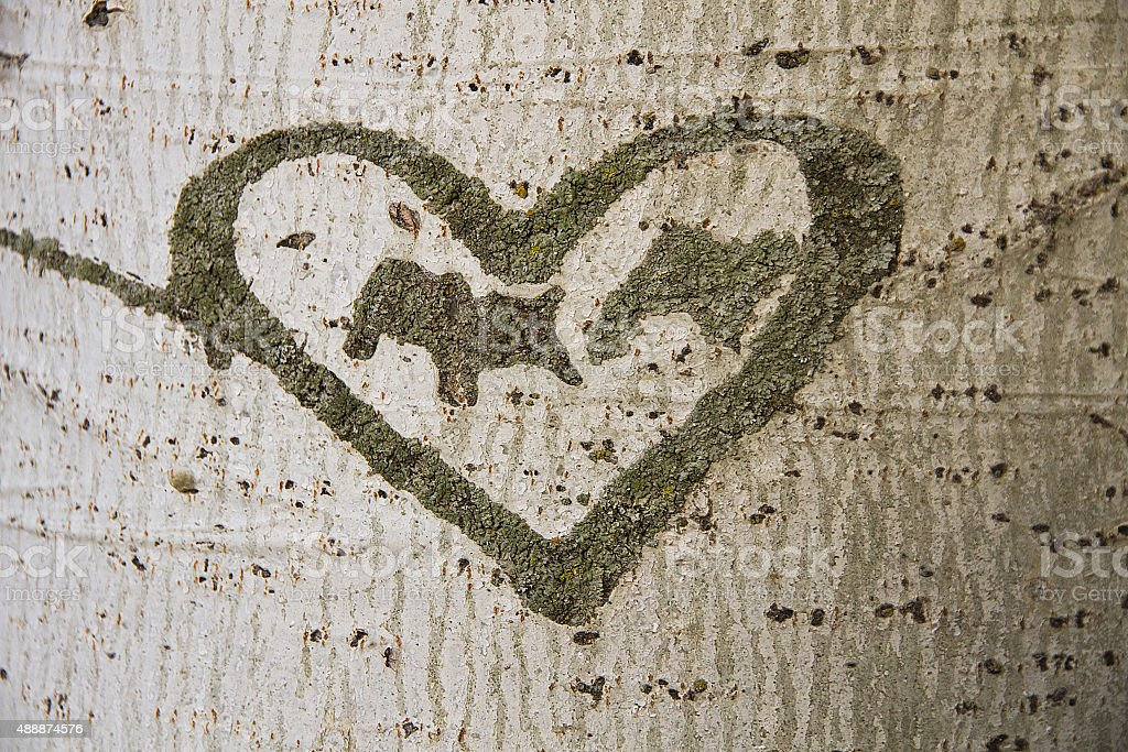 Heart Engraved on a Tree - Corazon Grabado en  Arbol stock photo