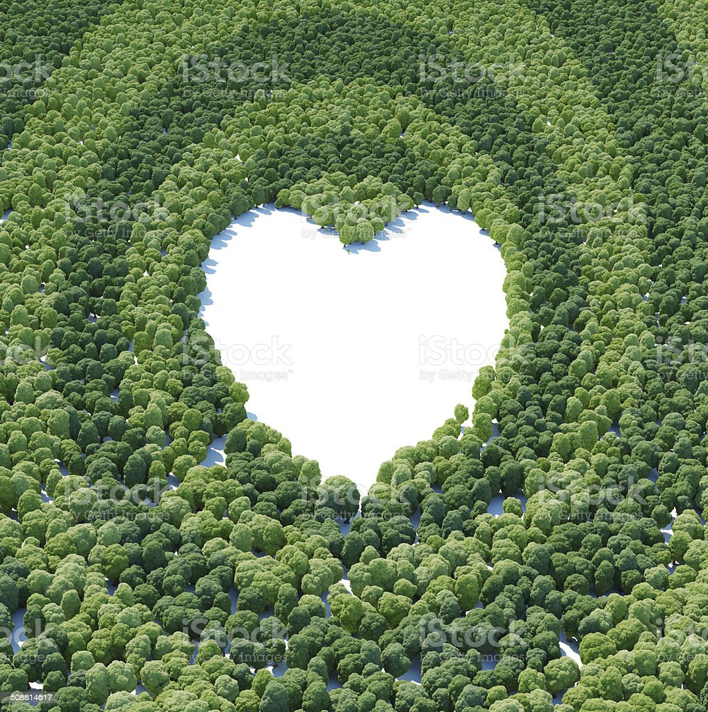 Heart forest stock photo