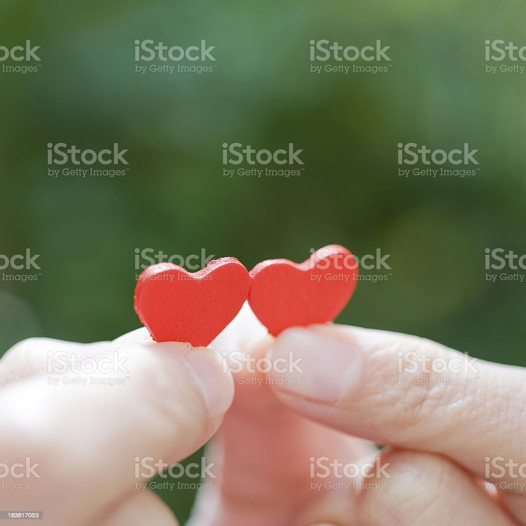 heart in the hands royalty-free stock photo