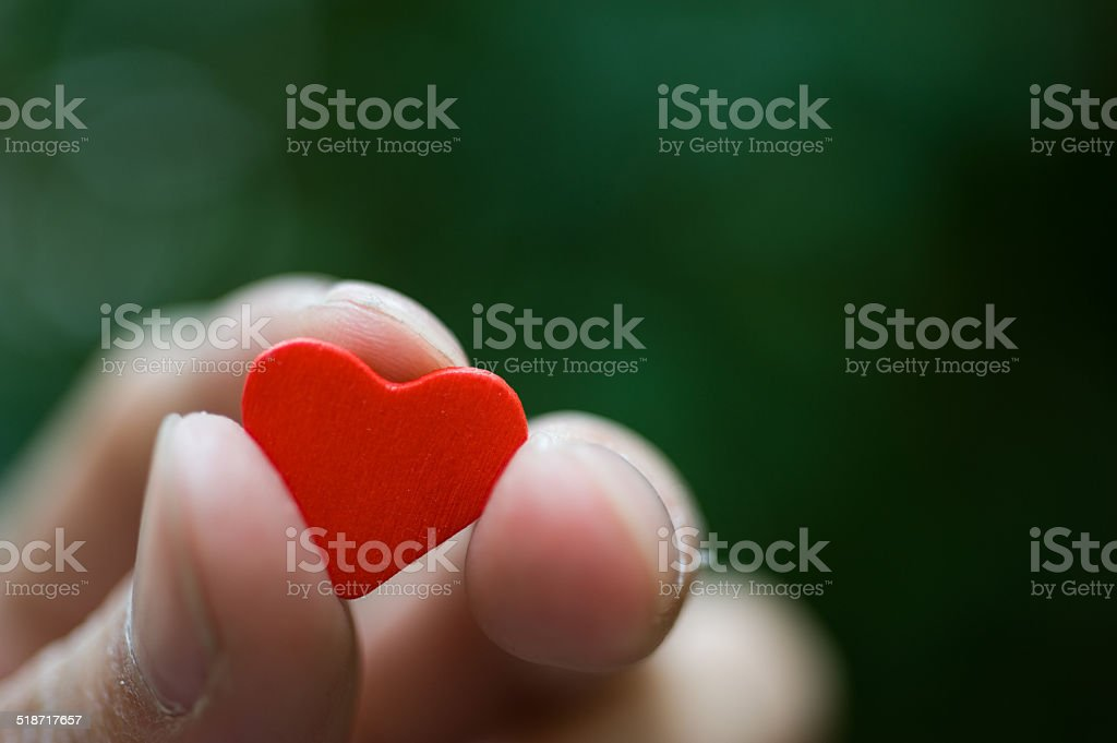 heart in the hands stock photo