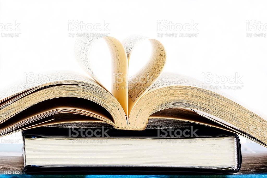 Heart inside a book stock photo