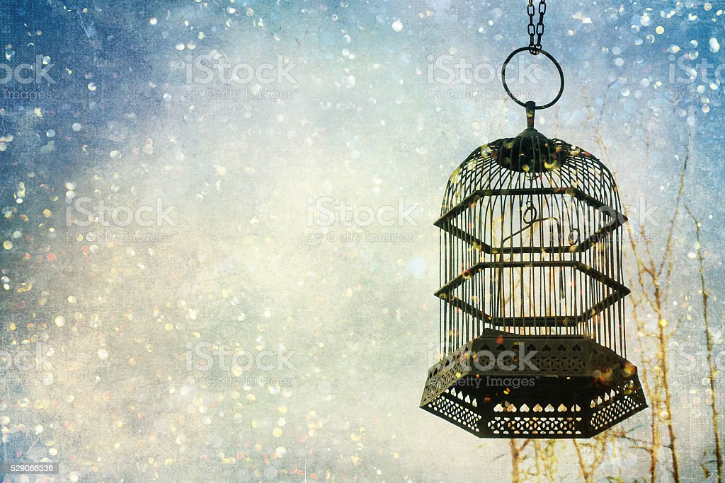 Heart inside the birdcage, hanging on the tree stock photo