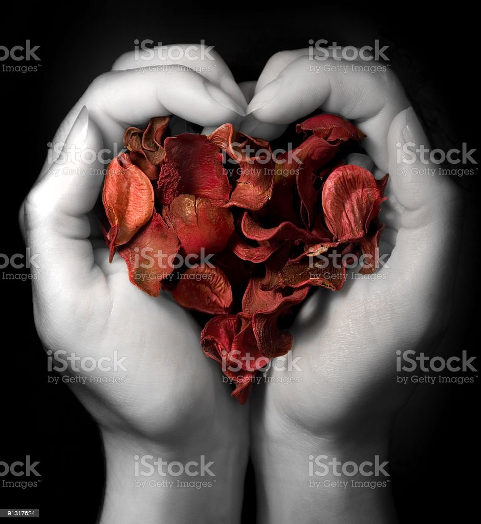 Heart of red petals royalty-free stock photo