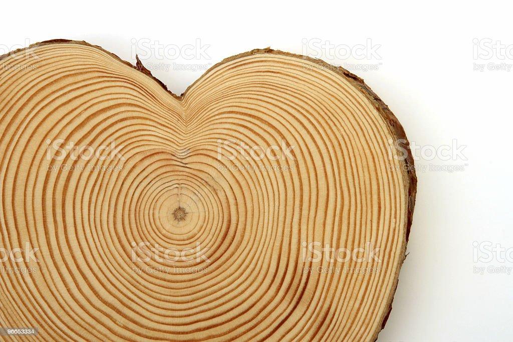 heart of wood royalty-free stock photo
