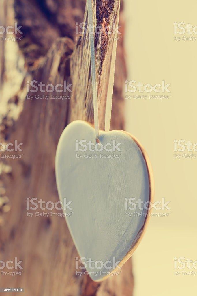 Corazón en una rama de árbol foto de stock libre de derechos