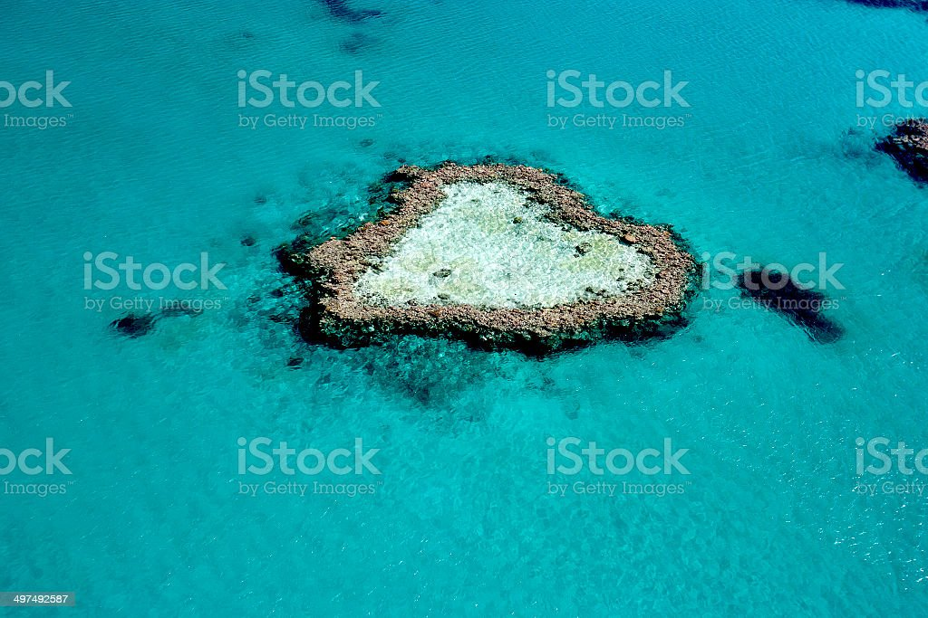 Heart Reef, The Great Barrier Reef, Queensland, Australia royalty-free stock photo