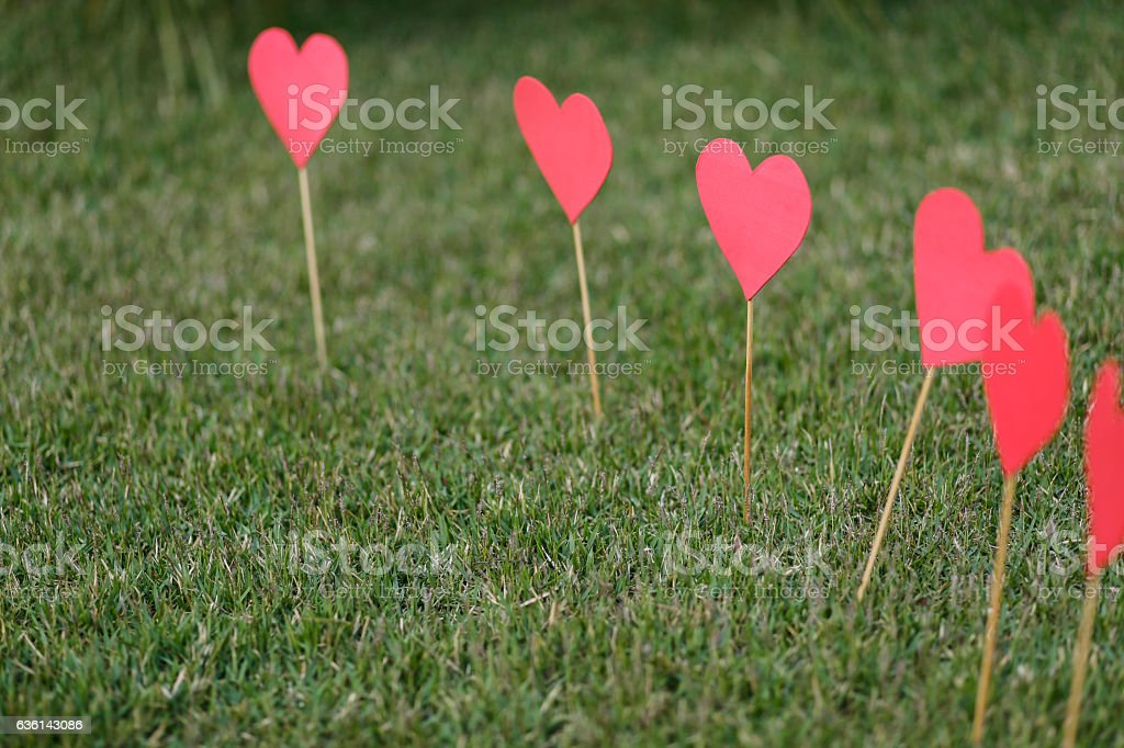 Heart shape applied on the lawn stock photo