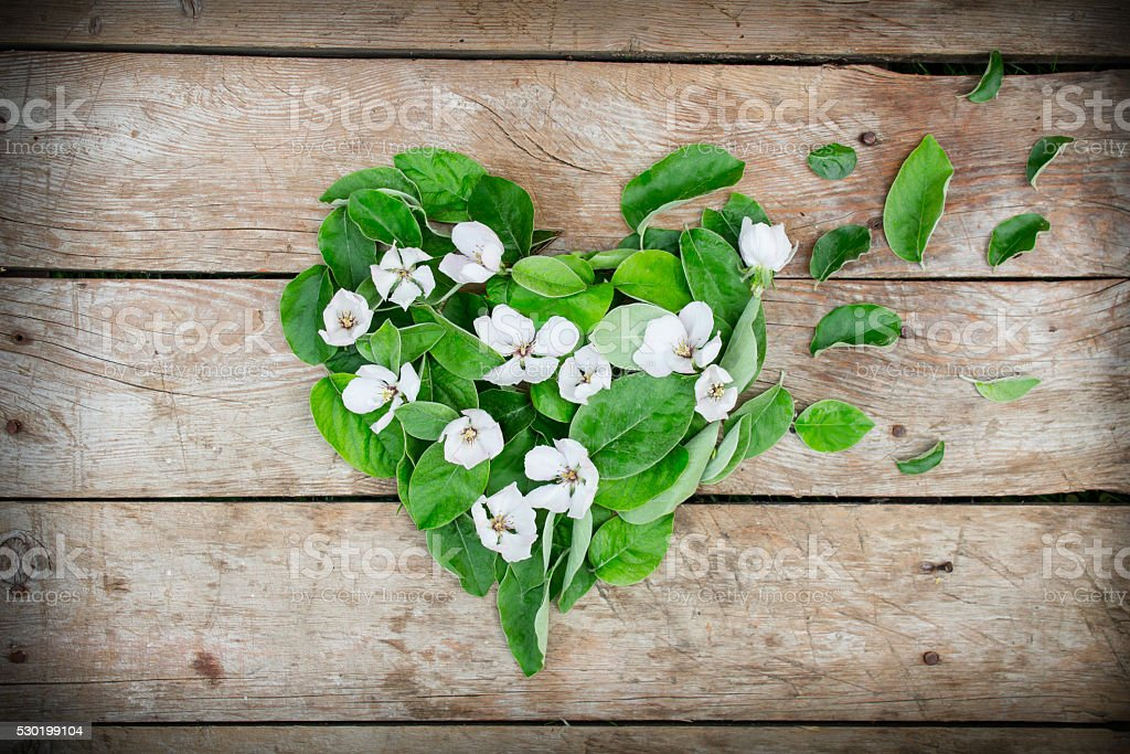 Heart shape arrangement made of leaves and flowers stock photo