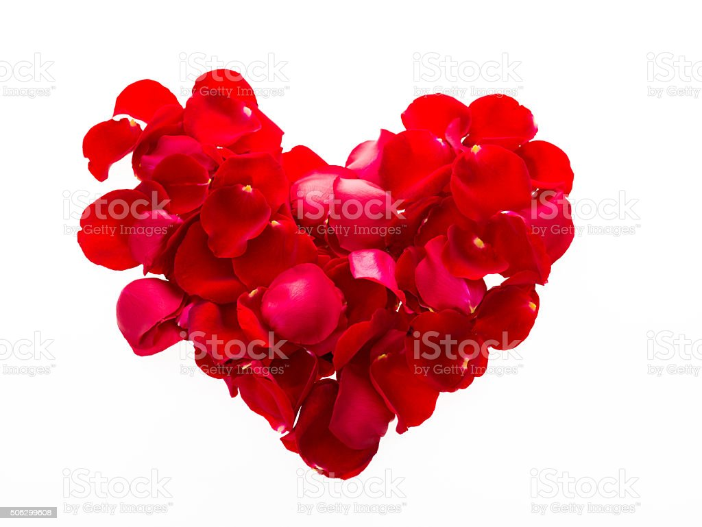 Heart shape by red rose petals stock photo