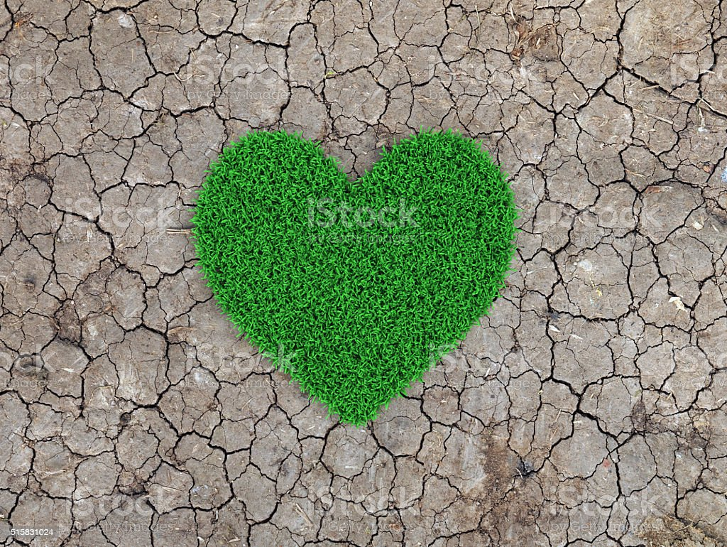 Heart shape Grass with cracked land stock photo