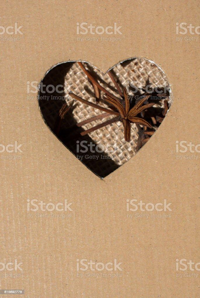 Heart shape hole on a dry leaf stock photo
