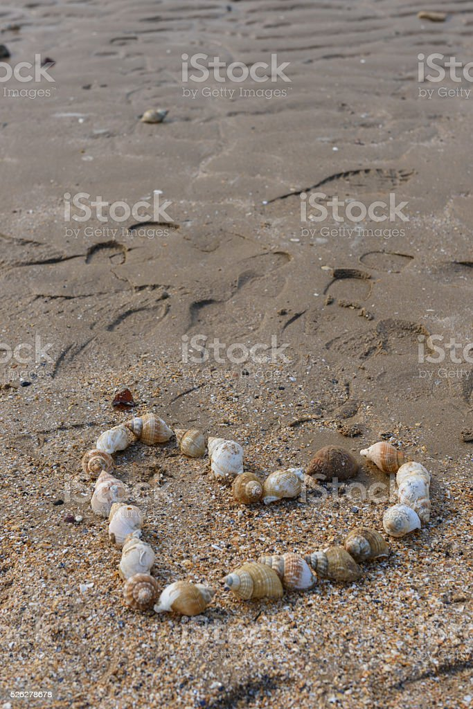 Heart shape made of Mussels stock photo