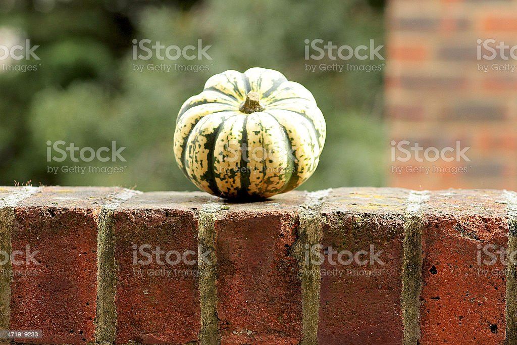 Heart Shaped on a Wall/ royalty-free stock photo