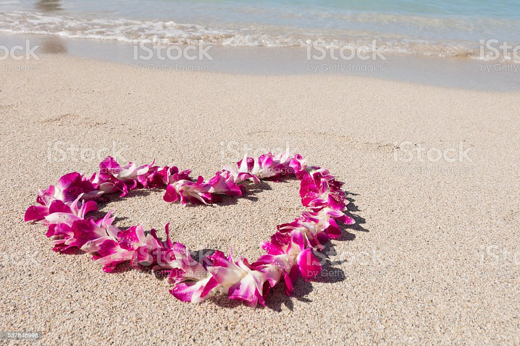 heart shaped orchid flower garland white sand baech stock photo
