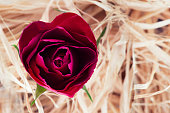 Heart shaped red rose