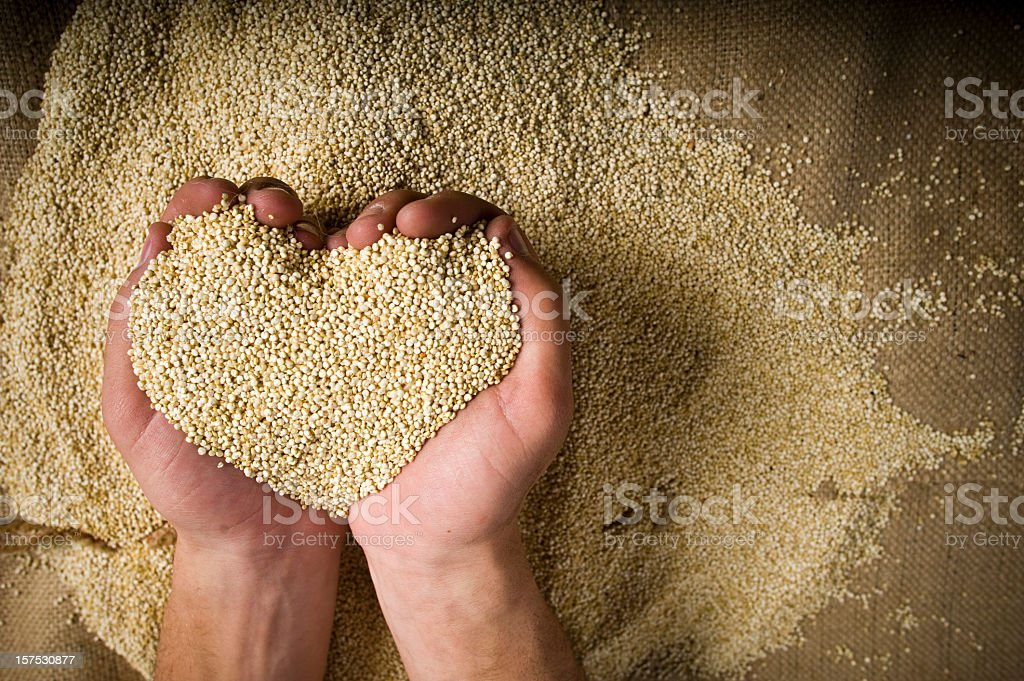 Heart shaped Superfood organic Quinoa whole grain in hands stock photo
