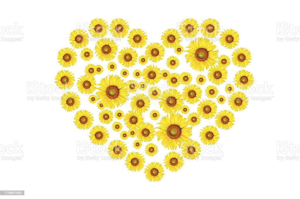 heart sign from sunflower on grasses royalty-free stock photo