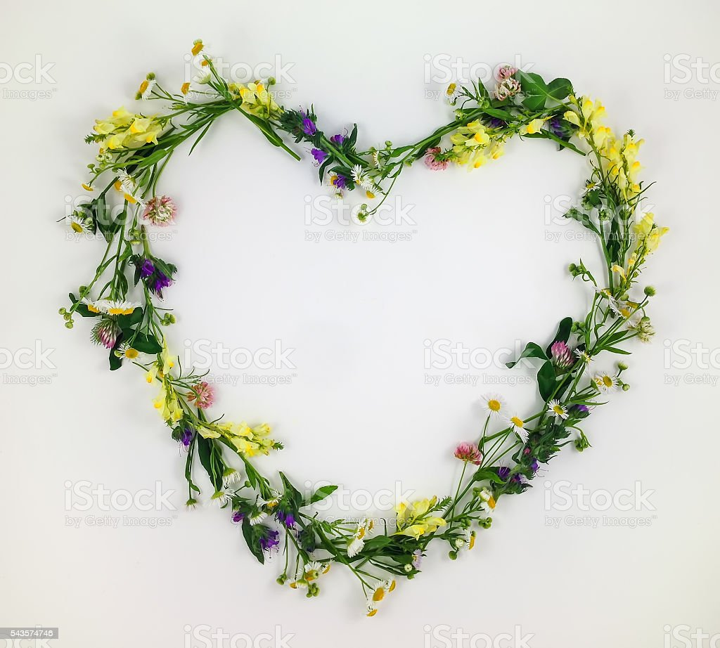 Heart symbol made of flowers and leaves on white background stock photo