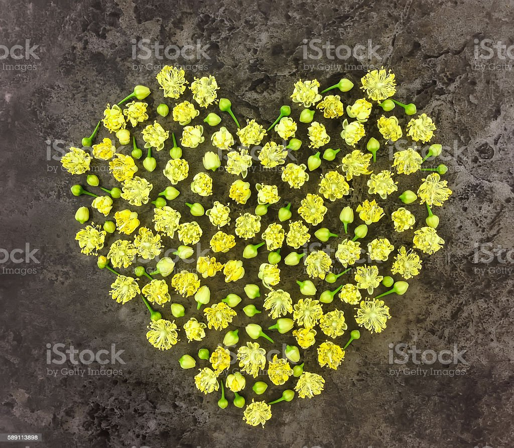Heart symbol made of flowers on dark background. Flat lay stock photo