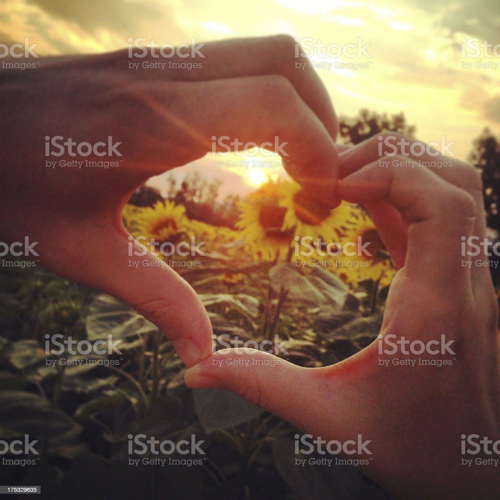 Heart Symbol Made with Two Hands stock photo