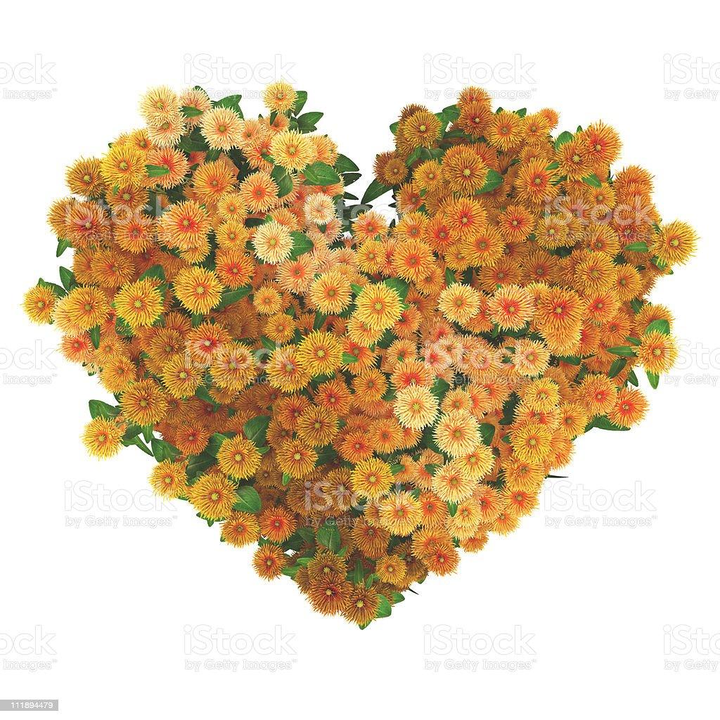 heart with many orange flowers stock photo