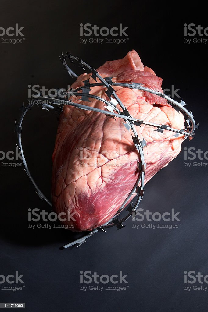 Heart wound  barbed wire. stock photo