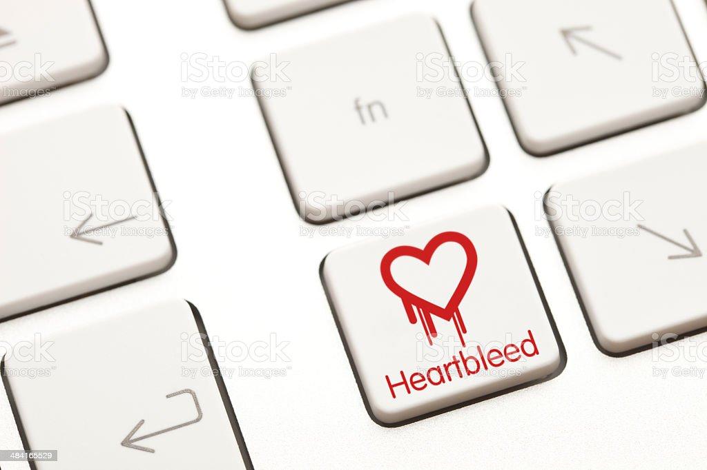 Heartbleed bug computer key royalty-free stock photo
