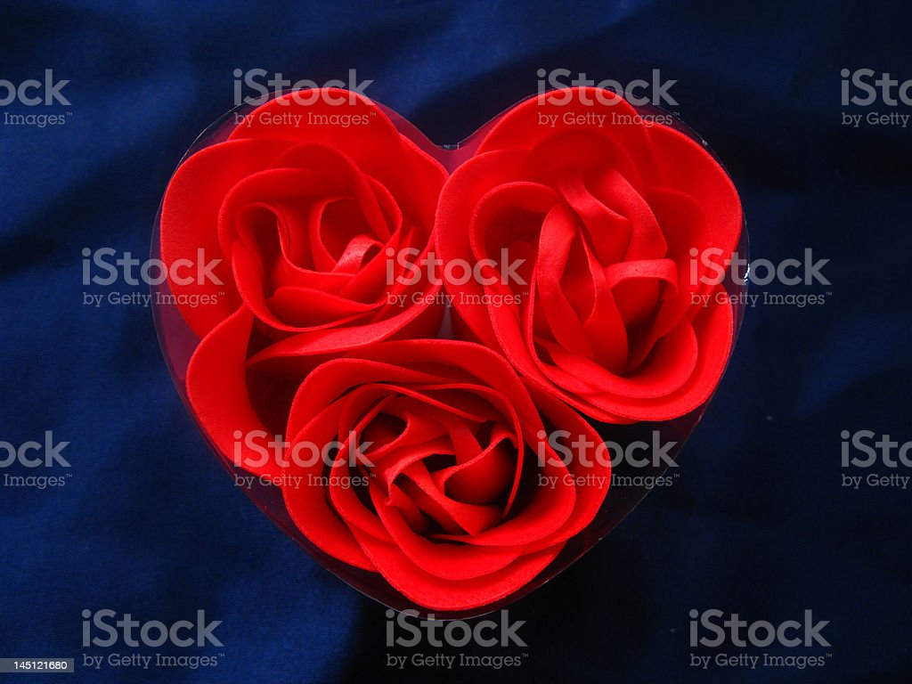 heart´s rose royalty-free stock photo