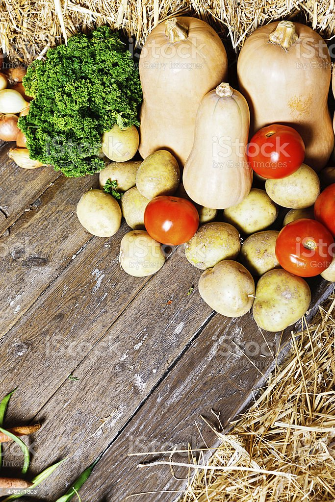 Hearty vegetable soup ingredients waiting for the cook! royalty-free stock photo